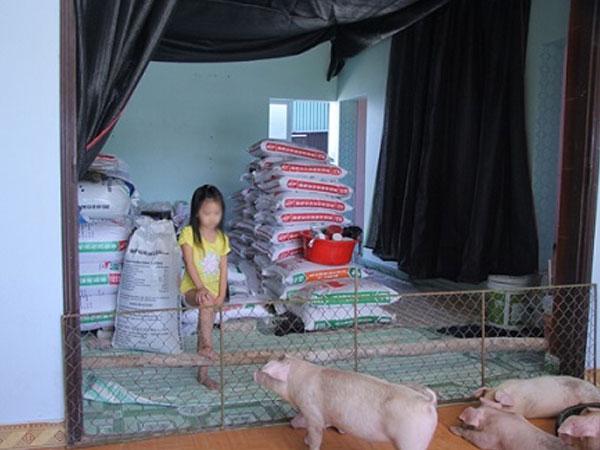 Chuyện lạ ở Hưng Yên: Lợn lên nhà nằm, người xuống kho ở
