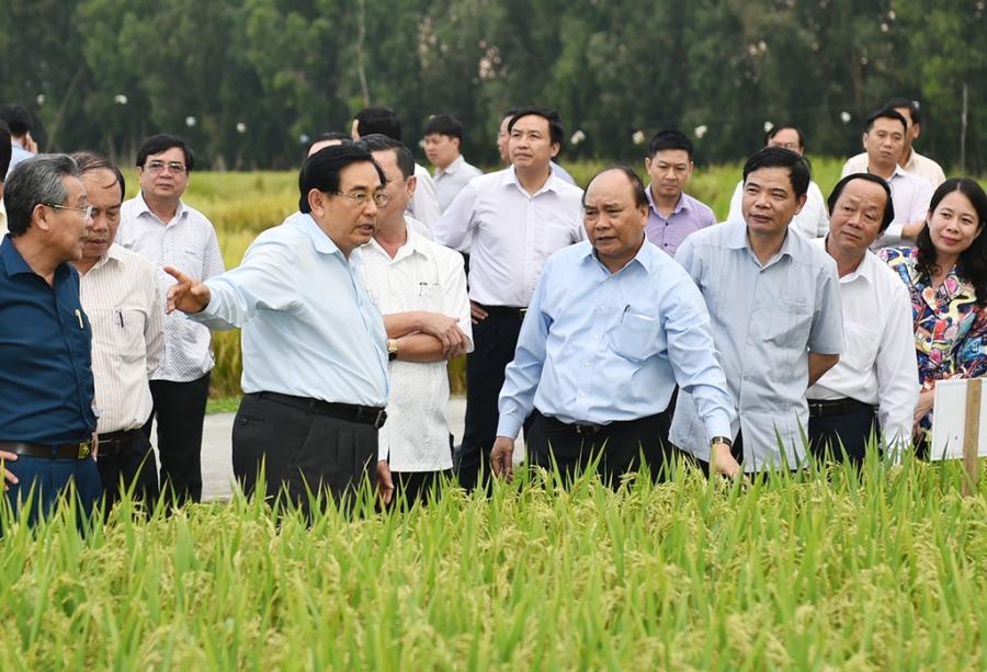'Hoi nghi Dien Hong' ban quyet sach cho Dong bang song Cuu Long hinh anh 1