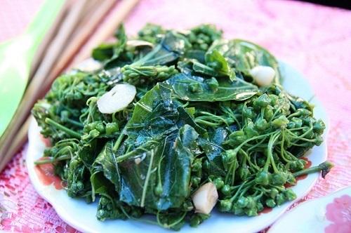 Hoa và lá ngón xào tỏi – đặc sản của người Thái trắng. (Ảnh: Internet)
