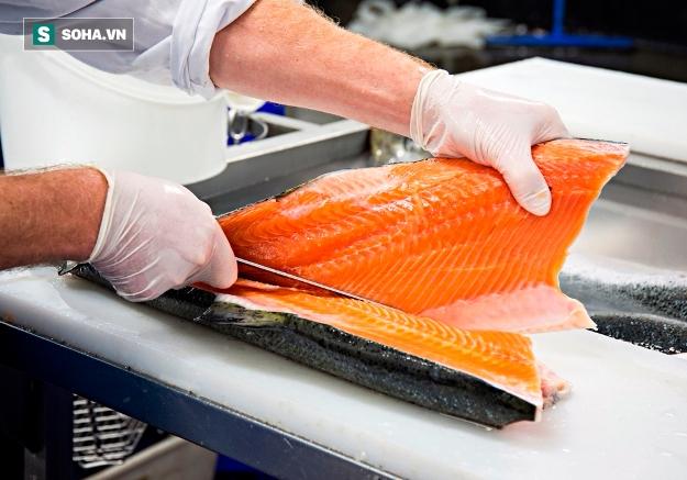 Cá đồng và cá biển – loại nào giàu chất dinh dưỡng hơn? - Ảnh 1.