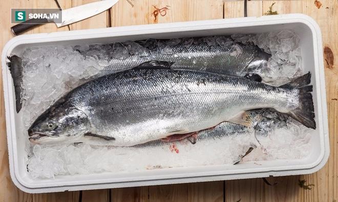 Cá đồng và cá biển – loại nào giàu chất dinh dưỡng hơn? - Ảnh 2.