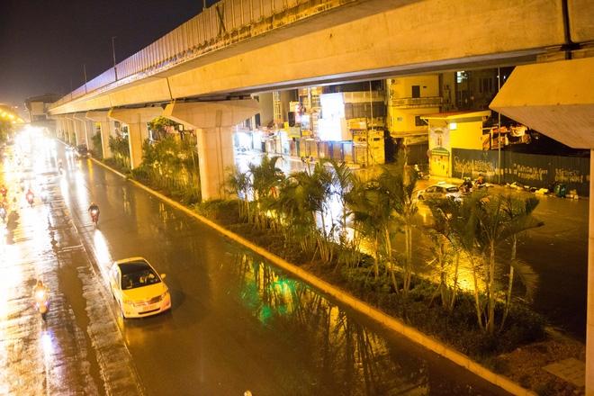 Hà Nội: Bất chấp đêm tối, trời mưa, hàng chục công nhân vẫn miệt mài trồng cau cảnh dưới đường tàu trên cao - Ảnh 1.