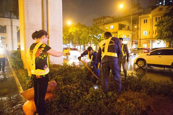 Hà Nội: Bất chấp đêm tối, trời mưa, hàng chục công nhân vẫn miệt mài trồng cau cảnh dưới đường tàu trên cao - Ảnh 4.