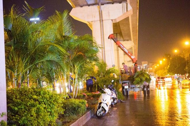 Hà Nội: Bất chấp đêm tối, trời mưa, hàng chục công nhân vẫn miệt mài trồng cau cảnh dưới đường tàu trên cao - Ảnh 7.