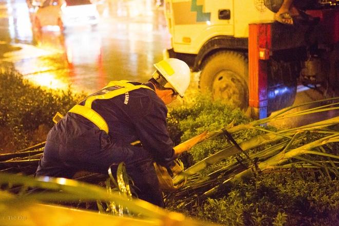 Hà Nội: Bất chấp đêm tối, trời mưa, hàng chục công nhân vẫn miệt mài trồng cau cảnh dưới đường tàu trên cao - Ảnh 11.