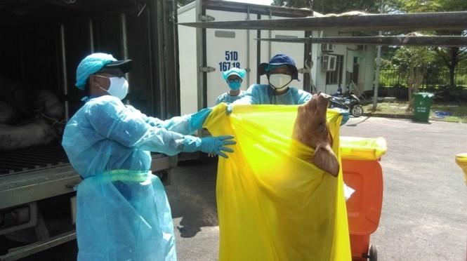 """Cận cảnh lò tiêu hủy gần 4000 con heo bị tiêm thuốc """"an thần"""" - ảnh 5"""