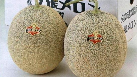 hoa quả nhật bản,dưa Nhật bản,đặc sản nhà giàu,hoa quả nhập khẩu