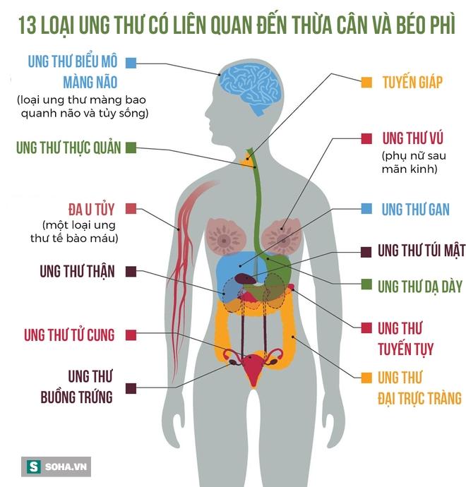 Phát hiện chấn động: 40% bệnh ung thư liên quan đến thừa cân béo phì - Ảnh 2.