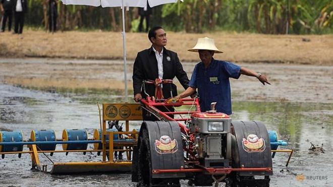 Thai Lan se to chuc bau cu vao thang 11/2018 hinh anh 1