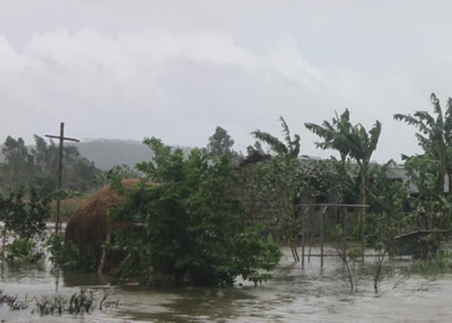 Đê vỡ tuy không gây thiệt hại về sản xuất và người, nhưng hơn 100 nhà dân bị ngập nước.