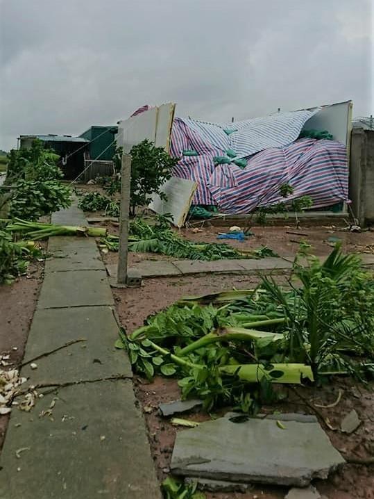 Lốc xoáy ở Thái Bình: 4 người bị thương, nhà đổ sập, tốc mái - Ảnh 1.