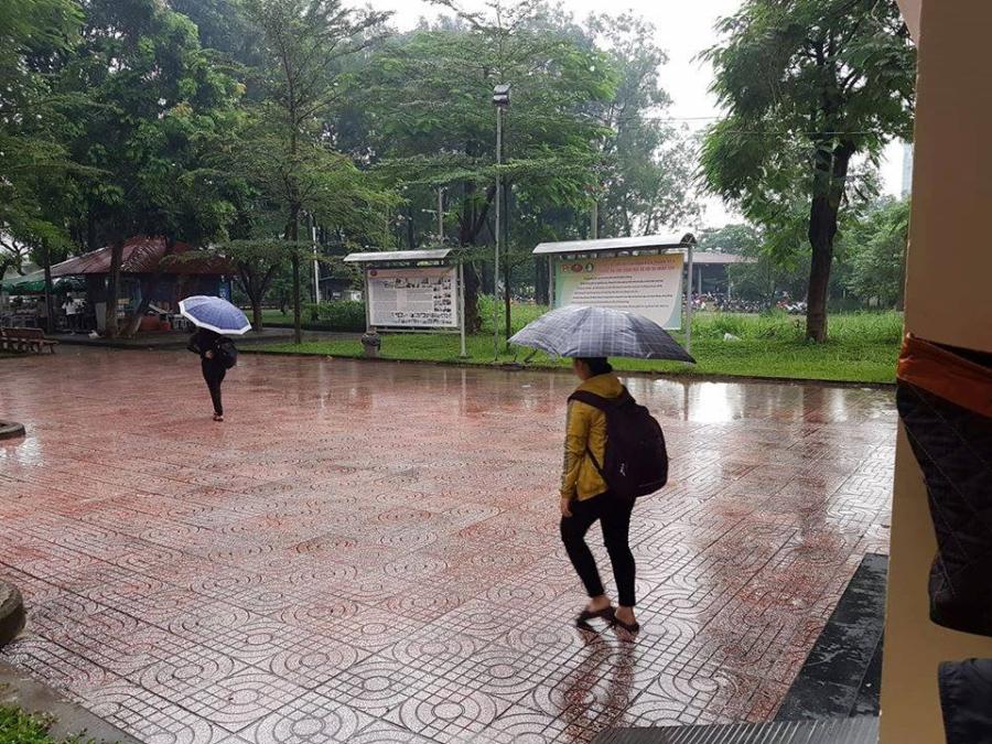 Trời mưa, chỉ có 5/500 sinh viên tham dự, giảng viên hụt hẫng - ảnh 2