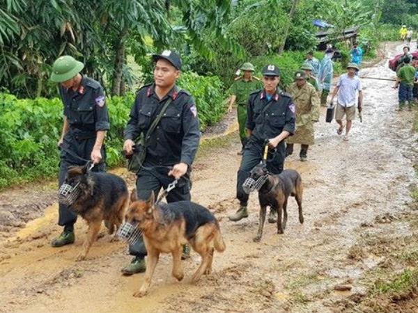 Huy động chó nghiệp vụ tìm 10 người bị vùi lấp ở Hòa Bình