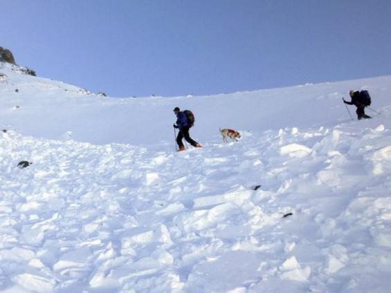 Bạn đồng hành bị tuyết chôn vùi, nhà leo núi nổi tiếng tự sát - Ảnh 1.
