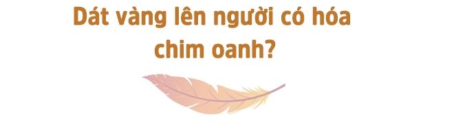 sao viet do ca nui vang di lam ca si, dai hay khon? - 1