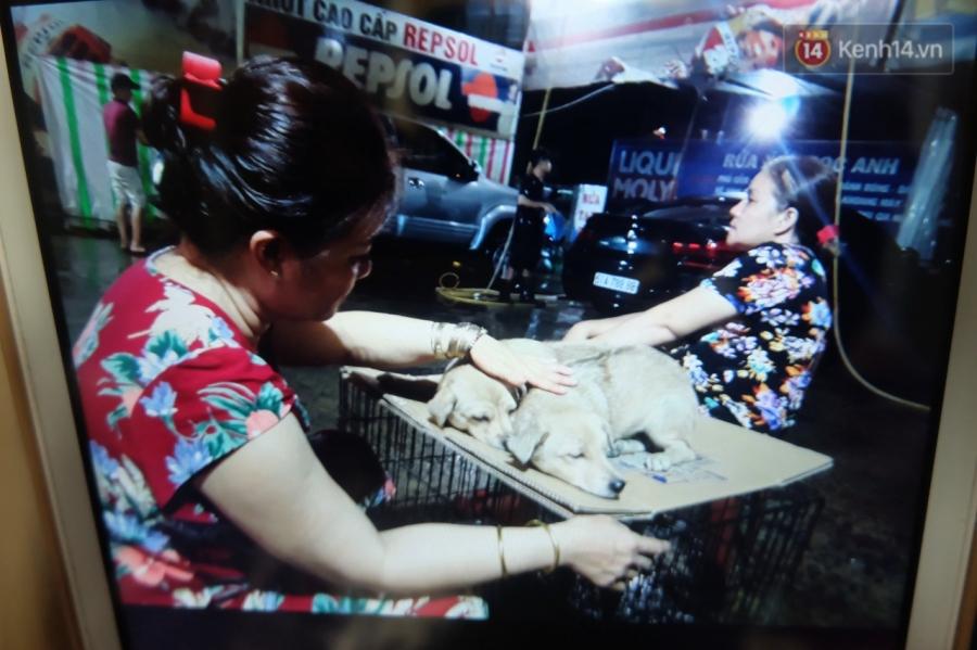 Clip 2 chú chó bị kéo lê đến chảy máu trên đường phố và đoạn kết đẹp từ sự bao đồng của người Sài Gòn - Ảnh 4.