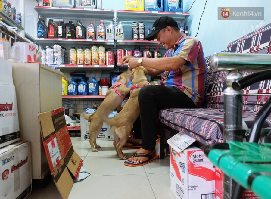 Clip 2 chú chó bị kéo lê đến chảy máu trên đường phố và đoạn kết đẹp từ sự bao đồng của người Sài Gòn - Ảnh 7.