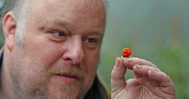 Có một loại ớt xấu ơi là xấu nhưng cay gấp 1.000 lần ớt thường và có khả năng... lấy mạng người - Ảnh 5.