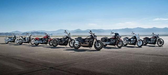Đập thùng hàng hot Harley-Davidson Softail 2018 tại Việt Nam - Ảnh 2.