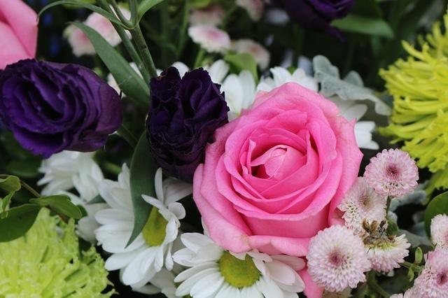 Giá hoa năm nay dù tăng giá song vẫn thu hút khá đông người mua