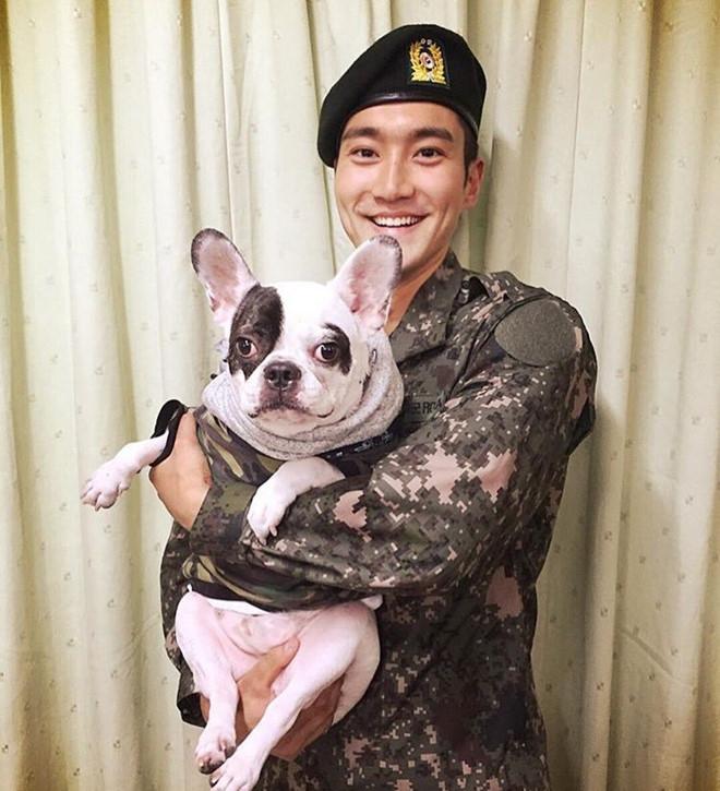 Ca si Si Won (Super Junior) xin loi vi de cho cung can chet nguoi hinh anh 1