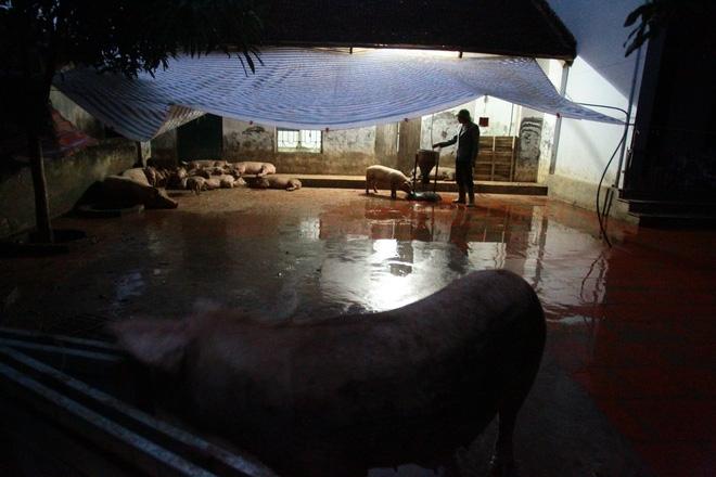 Hà Nội: 10 ngày sau lũ, người dân Tân Tiến rắc vôi bột trắng đường phòng bệnh dịch - Ảnh 5.