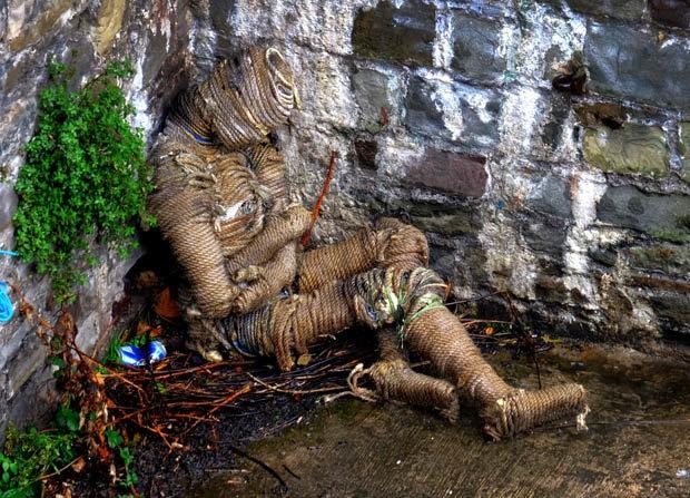 Xác ướp kì dị trôi dạt bờ sông ở Anh.